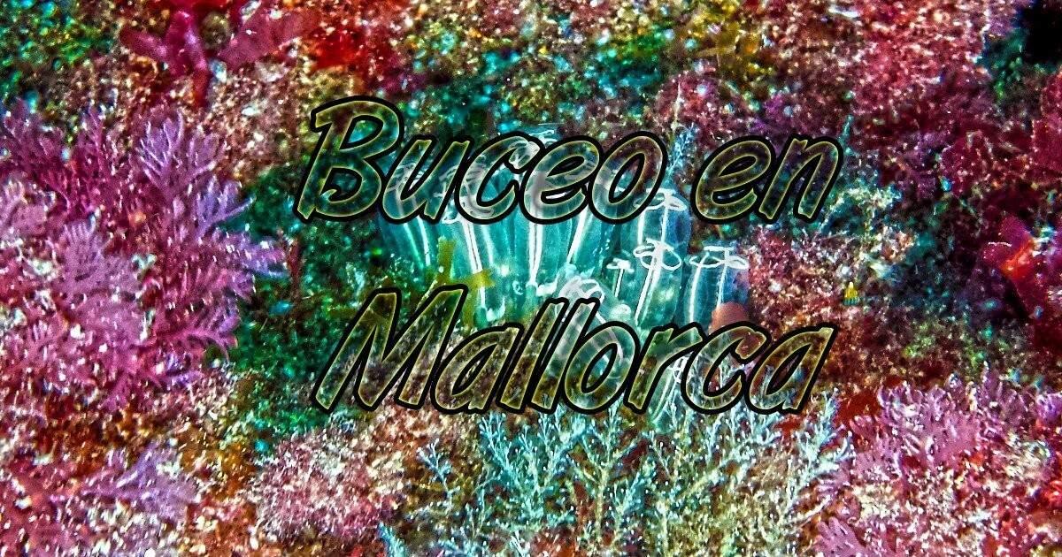 Buceo en Mallorca